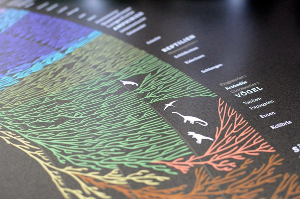 Stammbaum der Lebewesen Plakat Darwin Tree of life